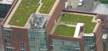 Какие крыши самые эффективные – белые, зеленые или черные?