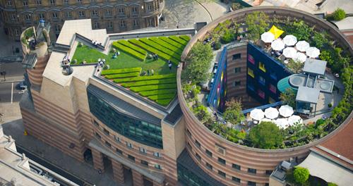 зеленые насаждения на крыше